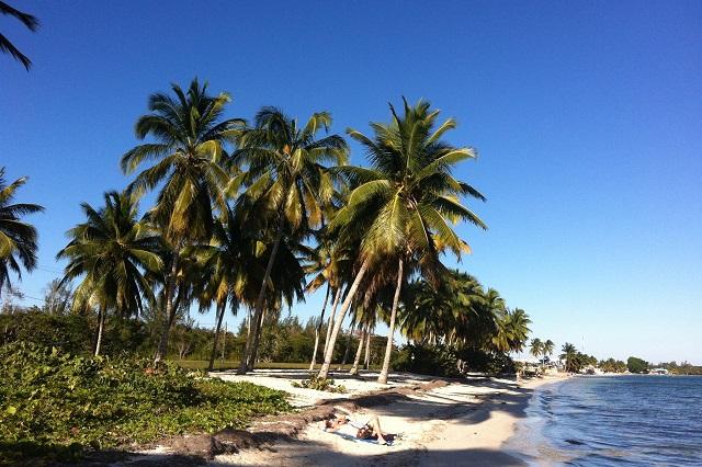Beach at Casa 46, Ciénaga de Zapata, Matanzas, Cuba